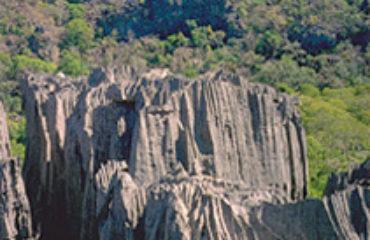 les Tsingy de l'Ankarana, surprenantes formations rocheuses d'origine corallienne