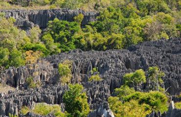 Panorama des Grands Tsingy du Bemaraha