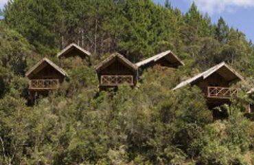 Réserve d'Anjozorobe - Saha Forest Camp